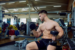 The guy is doing exercises with dumbbells in the gym Royalty Free Stock Photo