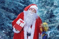 Santa Claus in a winter forest. Christmas and new year holiday. A guy dressed as Santa Claus in a winter forest opens gift box stock photography