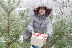 The guy among fir-trees with a gift Royalty Free Stock Photos