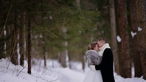 The guy gently kisses his girlfriend in a beautiful snowy winter forest. Great shot. Very nice background. stock footage