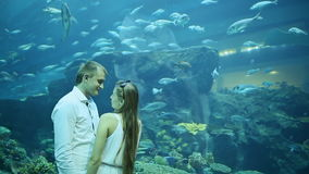 The guy and the girl are considering fishes sailing in the underground aquarium stock footage