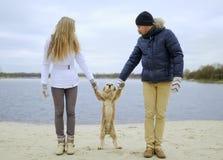 Guy, girl and dog royalty free stock image