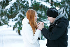 Guy and the girl enjoy winter walk. Young pair walks in wood, winter Stock Photos