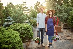 Guy and girl gardeners in a straw hats stand on the garden path and hold pots with wonderful petunia on a warm day in stock images