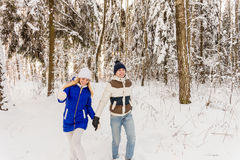 The guy and the girl have a rest in the winter woods. Stock Photography