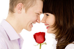 A guy and a girl holding a rose and look at each other Royalty Free Stock Photos