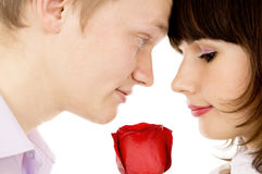 A guy and a girl holding a rose and look at each other Royalty Free Stock Images