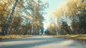 The guy and the girl made a trip by bicycle in the autumn forest
