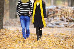The guy and the girl. Walk in the autumn park Royalty Free Stock Photo