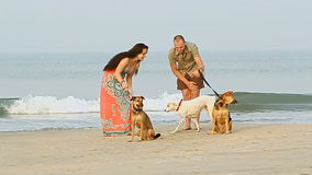 Guy Girl Walk with Dogs on Sand Beach Play by Ocean Surf stock video footage
