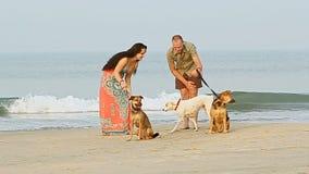 Guy Girl Walk med hundkapplöpning på sandstrandlek vid havbränning lager videofilmer