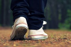 Guy goes in sneakers in the forest Royalty Free Stock Photo