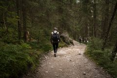 The guy going on a mountain trail royalty free stock photo