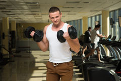 Guy in gym. Stock Image