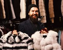 Guy with happy face shows fur coats in fashion store. Shop assistant holds grey sable and striped chinchilla fur coats. Shopping consultant concept. Man in hat royalty free stock photo
