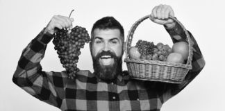 Farmer with happy face presents apples, cranberries and ripe grapes royalty free stock image