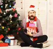 Guy in hat and scarf by Christmas tree and presents. Guy in hat and scarf sits by Christmas tree and presents. Santa Claus with flirty face on wooden wall and royalty free stock photography