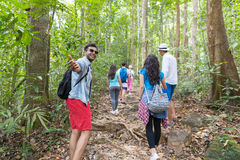 Guy Hold Hand Welcome People Group With Backpacks Trekking On Forest Path Back Rear View, Young Men And Woman On Hike Stock Photos