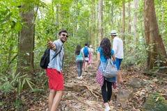 Guy Hold Hand Welcome People-Gruppe mit Rucksack-Trekking auf Forest Path Back Rear View, jungen Männern und Frau auf Wanderung Stockfotos