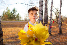 Guy holding bouquet of autumn leaves Stock Image