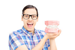 Guy holding dentures made out of plaster cast and looking at cam Stock Image