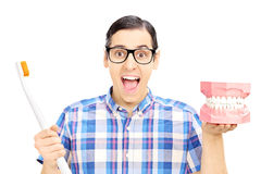 Guy holding a dentures made out of plaster cast and toothbrush Royalty Free Stock Photo