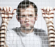 The guy in jail Stock Photography