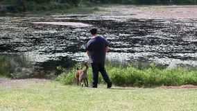 Guy at lake with a dog. Young man walking a dog next to a lake stock video