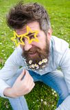 Guy looks nicely with daisy flowers in beard. Photosession concept. Man with beard and mustache, defocused green. Background. Hipster with beard on cheerful Stock Photo