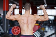 The guy is pumped up dumbbells up in the blurred background of the gym. Back view. A guy inflated rises dumbbells up with a bare torso on the blurred background Stock Photos