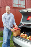 Guy puts apples in the trunk of car Stock Image