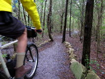 Guy riding mountain bike on wet trail. Stock Photography