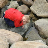 The guy on the rocks Stock Photography
