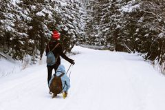 The guy rolls a girl on a sled along a snow-covered road through the dark forest. A group of people enjoying snowshoeing on a royalty free stock photos