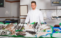 Guy selling chilled fish and seafood Royalty Free Stock Image