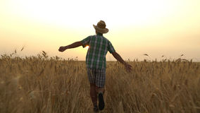 Guy in the shirt is running across the field. Royalty Free Stock Photos