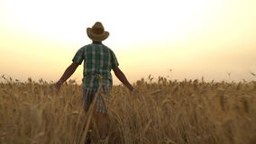 Guy in the shirt is running across the field. Royalty Free Stock Image