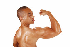 Guy showing his biceps. Royalty Free Stock Photography
