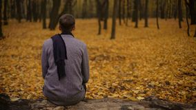 Guy sitting in park inspired by beautiful nature and thinking about past life. Stock photo royalty free stock photos