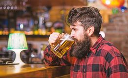 Guy spend leisure in bar, defocused background. Hipster with beard holds glass with beer, drinks, enjoy fresh taste. Relaxation concept. Man on calm face sits stock photography