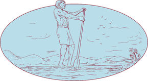 Guy Stand Up Paddle Tropical Island Oval Drawing Stock Photos