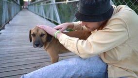 A guy strokes a dog sitting on a bridge