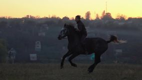 Guy at sunset jumping on a stallion . Slow motion. Side view. Guy at sunset jumping on a black stallion . Slow motion. Side view stock video footage