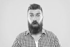 Guy surprised face expression. Hipster with beard and mustache emotional surprised expression. Rustic surprised macho. Surprising news. Man bearded hipster royalty free stock photography