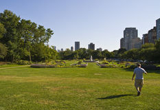 Guy Waling in City Park. Man walking in a big city park with fountain showing downtown in background Stock Photography