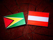 Guyana flag with Austrian flag on a tree stump  Royalty Free Stock Image