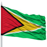 Guyana Flag on Flagpole. Flying in the Wind, Isolated on White Background Royalty Free Stock Image