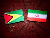 Guyana flag with Iranian flag on a tree stump isolated Royalty Free Stock Image