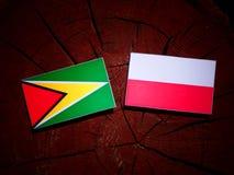 Guyana flag with Polish flag on a tree stump isolated. Guyana flag with Polish flag on a tree stump stock illustration