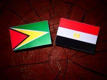 Guyana flaga z egipcjanin flaga na drzewnym fiszorku Fotografia Stock